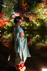 Maiko20161119_06_02 (kyoto flower) Tags: kodaiji temple fukuno kyoto maiko 20161119      noblesseoblige
