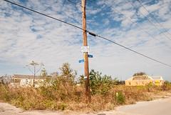 jD200811_375 (chuckp) Tags: katrina la lowerninthward neworleans dystopia nature urban us