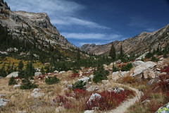cascadecanyon6 (laelia74) Tags: wyoming grandtetons fall nature outside hiking mountains