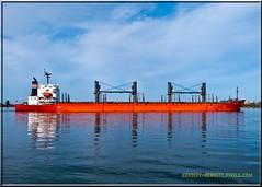 Eastern Asia_2481 LR (bradleybennett) Tags: ship shipping cargo tanker tank river delta boat port channel steam large crew crane bay ocean dock pier blue red water line bulkcarrier eastern asia