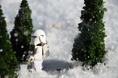 snow trooper (Sour Cloud) Tags: winter starwars snow salt trees snowtrooper gun firstorder stormtrooper