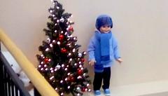 Library Christmas decoration. (Maenette1) Tags: christmas decoration tree boydoll spiespubliclibrary menominee uppermichigan flicker365