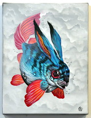 Veks Van Hillik - Specimen 54378 (Thethe35400) Tags: poisson fish pescado fisch arrain peix peixe pesciu pesce fisk ryba pete