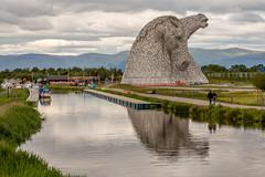The Kelpies and The Helix (IceNineJon) Tags: unitedkingdom scotland stirlingshire photography greatbritain canon5dmarkiii andyscott thehelix falkirk europe thekelpies grangemouth 5dm3 britain uk