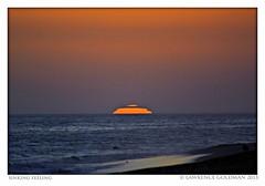 Sinking Feeling (lhg_11, 2million views. Thank you!) Tags: beach malibu southerncalifornia leocarrillostatebeach