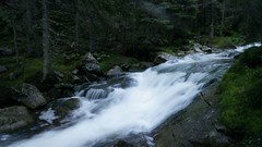 Valea Stanisoara (Sorin Sfrlogea) Tags: retezat montaniard