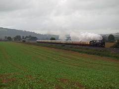 The Torbay Express at Stoke Canon (philwakely) Tags: train moving rail railway trains steam locomotive railways britannia steamtrains steamlocomotive britishrailways 70000 rewe uksteam torbayexpress stokecanon mainlinesteam
