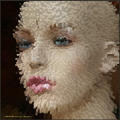 fragments of beauty (Fr@nk ) Tags: holland creativeart frnk mrtungsten62