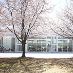 大学施設の写真