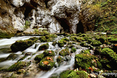 Rakov Skocjan (Uros P.hotography) Tags: road trip travel bridge autumn color colour tourism colors beautiful leaves photoshop river photography leaf amazing nice fantastic perfect long exposure colours tour view natural superb hiking unique sony awesome famous tourist adventure glorious slovenia journey software stunning excellent nik cave slovenija lovely fullframe striking incredible karst unforgettable brilliant breathtaking extraordinary aweinspiring remarkable monumental stupendous 70200mm memorable exceptional skocjan kras 14mm a7ii colapsed samyang acclaimed rakov urosphotography