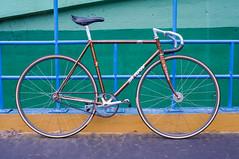 #TrackFever (funkyruru) Tags: postprocessed bike 50mm 28mm cycle fixie fixedgear samson pista ricoh a12 trackbike gxr trackfever