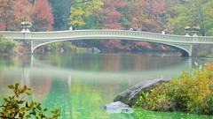 New York: Bow Bridge - Central Park