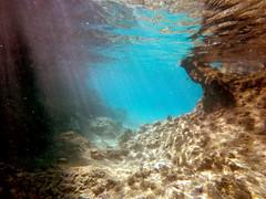 Underwater Playa Giron (Ludovic Farine) Tags: travel sea summer fish beach america island fishing underwater cuba playa traveller snorkeling caribbean larga giron