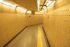 Japan 2015 (pho2on) Tags: travel japan subway scenery metro clean osaka kansai province japenese 2015