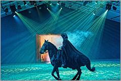 Le cavalier noir qui personnifi les forces du mal (dans la lgende de Mervent ) (henri.drouin) Tags: france cheval noel intrieur spectacle vende quitation haras paysdeloire larochesuryon equestre