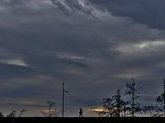 Am Meer***By The Sea (BrigitteE1) Tags: trees sunset sea sky storm love nature water clouds germany de deutschland person wasser europa europe alone sonnenuntergang natur himmel wolken bume bremerhaven sturm coucherdusoleil bythesea allein ammeer oja ilovethesea nagrobli amdeich onthedike  sulladiga opdedijk  agt pdiget dikezerinde    sobreodique eneldique surladike surladigue dike pdike pvallen  padatanggul pedigul  superfossatum
