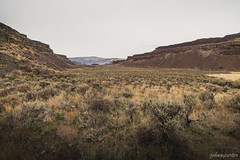 A walk in the park (johnwporter) Tags: hiking scramble mountains easternwashington centralwashington washington desert mosescoulee coulee threedevilsgrade pnw upperleftusa northwestisbest              iceagefloods  wideangle wideanglelens   atx116prodx tokinaaf1116mmf28