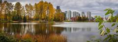 Lafarge Lake Coquitlam (briantolin) Tags: lafargelakecoquitlam coquitlam lake autumn falltrees october nature foliage