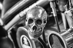 ☠ (michael_hamburg69) Tags: hamburg germany deutschland hansestadt motorrad triumph 6t thunderbird classicbike vintage motorcycle 19601962 doppeltesbrustrohr gelötetefittings geschraubtesheck motor 650ccm silkshiftgetriebe handschaltung jockeyshift 1961
