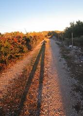 Sjena - The Shadow (Hirike) Tags: shadow sjena croatia hrvatska bra postira