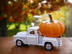 Monster Pumpkin.  (Through Serena's Lens) Tags: chevrolet3100 chevy truck miniature vehicle macro bokeh pumpkin orange small fall autumn outdoor stilllife toy sunlight