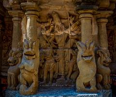 "Vishnu As Trivikrama @ Kailasanathar -Kanceepuram. (Kalai ""N"" Koyil) Tags: nikon d 5200 2016 kancheepuram kanchipuram kailasanathar koyil temple lord cosmic mountain rajasimha pallava ruler dynasty dravidianarchitecture 685705ad vedavathiriver circumbulatorypassage santharavimana narasimhavarmanii rajasimhapallaveswaram sonmahendravarmaniii frontfacadegopuram templetankview ntnc67 outdoor road building architecture serene tamilnadu southindiantemple architecturestyle architeture vishnu trivikrama 18140 mm column stonework kalainkoyil"