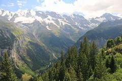 11745384_10206372317060565_6660390744725424728_n (changeyourscreennametopatrick) Tags: switzerland travel trekk hike passport mountains trees cows cheese waterfall wildflower meiringen oberland swiss wanderer