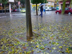 Tardor (3) (calafellvalo) Tags: otoo autumn fall automne herbst ocher reddle ocre ocker viedos vineyard weinberg vignoble rouge red calafellvalo madroo tardor