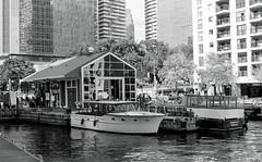 Harbour Taxies and Tour Boats_ (Bill Smith1) Tags: believeinfilm berggerbrf400 billsmithsphotography d7611 harbourfront heyfsc nikkoraislenses nikonfm2n october2016 toronto filmshooterscollective