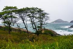 DSC_6249 (sergeysemendyaev) Tags: 2016 riodejaneiro rio brazil         prainha beach ocean storm waves landscape