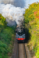 """""""Cutting through the silence"""" BR 4MT 76017 (VehicularBrit) Tags: steam train loco power watercress line mid hants railway engine smoke fire autumn preservation classic heritage 1960s"""