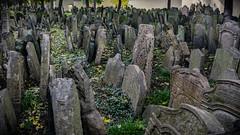 Gravestones (andbog) Tags: sony alpha ilce a6000 sonya6000 emount mirrorless csc sonya sonyα sonyalpha sony⍺6000 sonyilce6000 sonyalpha6000 ⍺6000 ilce6000 apsc praga prague praha prag repubblicaceca cechia českárepublika czechrepublic boemia čechy böhmen handheld oss 1650mm selp1650 starýžidovskýhřbitov oldjewishcemetery cemetery cimitero grave graveyard gravestones jewish josefov staréměsto widescreen 169 16x9 jewishquarter josefstadt