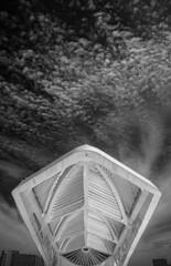 Museu do Amanhã / Rio de Janeiro (marcelo.guerra.fotos) Tags: riodejaneiro rio brasil brazil museum museudoamanhã museu blackandwhite blancoynegro blackwhite noiretblanc monochrome modern modernbuilding architecture black