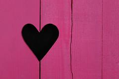 A coeur vaillant, rien d'impossible... (NUMERIK33) Tags: coeur heart pink rose volet bois