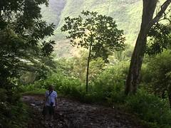 Waipio Valley (pajarero) Tags: waipio valley mark emily honeymoon iphone hawaii