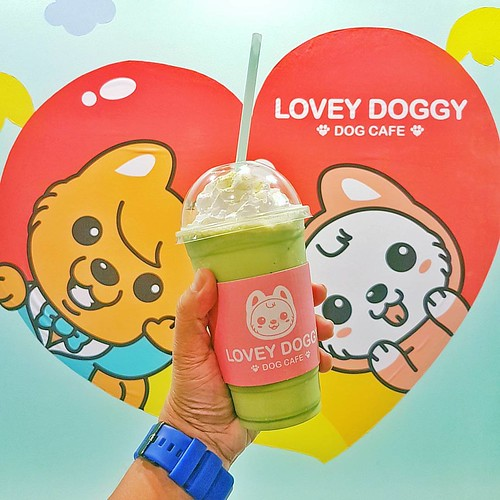 A cafe for me and poppee!                                   #LoveyDoggy #DogCafe #Cebu #Cafe #PetFriendly #InstaPet #InstaGood #InstaDaily #POTD #TheDentistIsOut #vsco #VSCOcam #VSCOcamPH