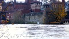 Torino (43) (cattazen.com) Tags: alluvione torino po esondazione parcodelvalentino murazzi pienadelpo cittditorino turin piemonte