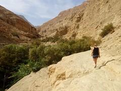 Hike Ein Gedi (Wadi Arugot)