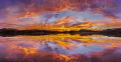 Nicasio Reflection.... (markarlilly) Tags: nicasio nicasioreservoir marin marincounty sonoma sonomacounty california sunrise zeiss zeiss15mm pano panorama distagon1528zf
