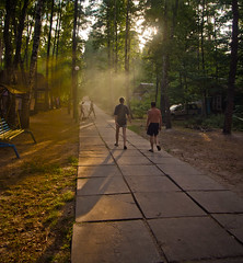Barbecue's wrapover in sunset air (kud4ipad) Tags: prokhorovka evening dnieper sunset forest shadow sunlight beam people outdoors ukraine summer