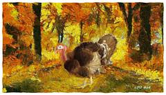 Why did the turkey cross the road? (Leo Bar) Tags: thanksgiving painting colors autumn texture pixinmotion nature leobar fallseason forest wildlife turkey newengland artdigital netartii