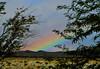 November 27, 2016 (365 Gay #214) (gaymay) Tags: california desert gay love palmsprings riversidecounty coachellavalley rainbow 365gay outside