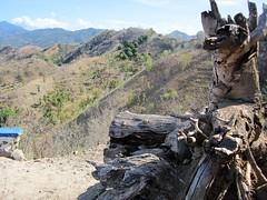 SLOPES (PINOY PHOTOGRAPHER) Tags: mati city davao oriental sur mindanao philippines asia world