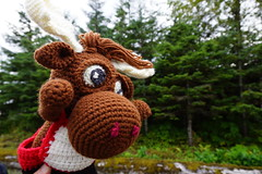 DSC01042 (The Crochet Crowd) Tags: crochetmoose amigurumi moose crochet doll alaska britishcolumbia thecrochetcrowd michaelsellick jeannesteinhilber danielzondervan crochetcruise mooseontheloose