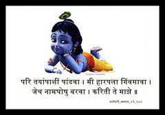 gopal_28 (swapnil.kapsikar) Tags: krishna swapnil ovi pandharpur pandurang mauli palkhi pandhari dnyaneshwar palakhi dnyaneshwari kapsikar