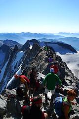 Gipfel vom Hochfeiler (germanium) Tags: wandern südtirol bergwandern hochfeiler bergwanderung pfitschtal hochfeilerhütte