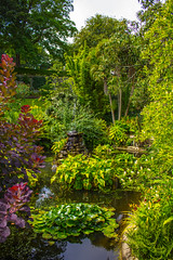 Candie Gardens @ St. Peter Port, Guernsey, Channel Islands, UK ([ PsycBob ]) Tags: park uk england green st gardens port islands peter grn guernsey channel candie