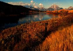 Grand Teton National Park (udbluehens) Tags: grandtetonnationalpark oxbowbend mtmoran grandtetonfallcolors