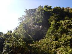 Kajakken bij Elephant Hills