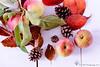 Day 277 of 365 Autumn colours (Sue_Todd) Tags: autumn leaves autumnleaves autumncolours apples 365 pinecones autumnfruits autumnapples 365project autumnfood 277365 3652015